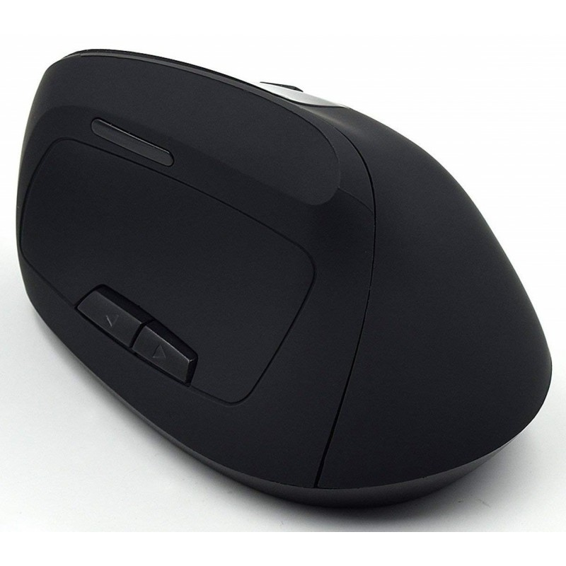 Raton Wireless Ewent Ergonomico EW3158