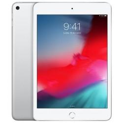Apple Ipad Mini 5 256GB Wifi Plata