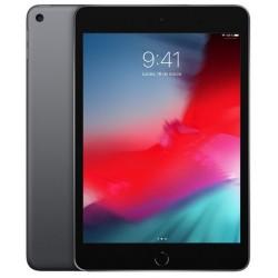 Apple Ipad Mini 5 256GB Wifi Gris Espacial