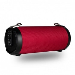Altavoces Ngs Roller Temp...